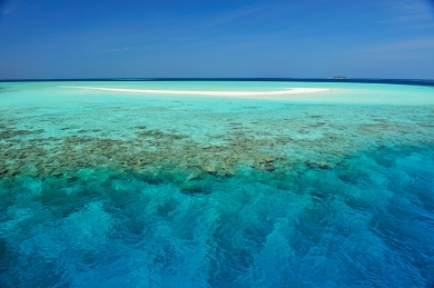sandbank, lagoon and reef