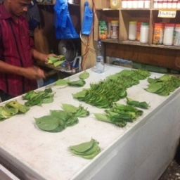 seller sorting betle leaves