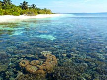 Lagoon and corals